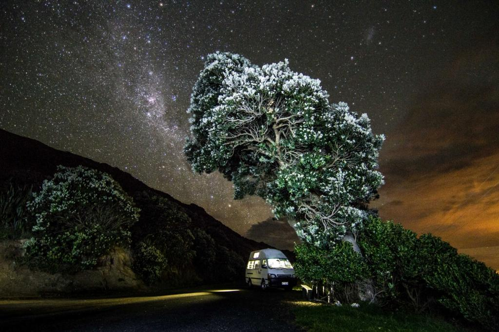 A night under the New Zealand stars in a PiwiWiwi campervan